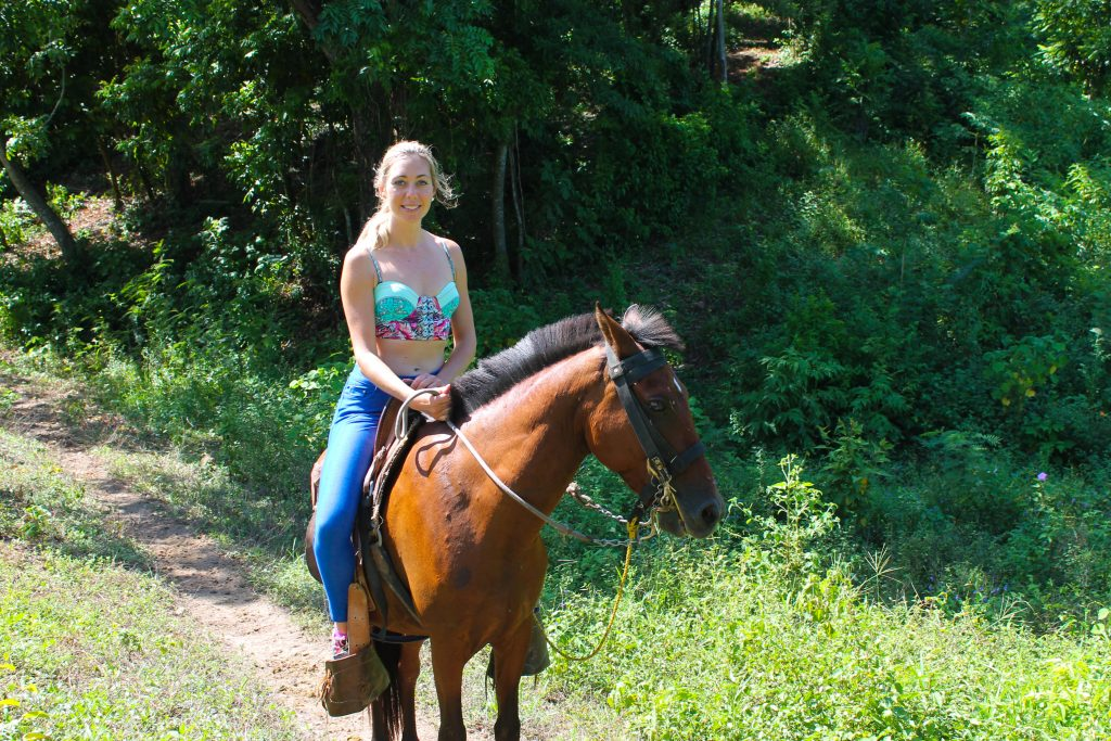 roatan horseback tours