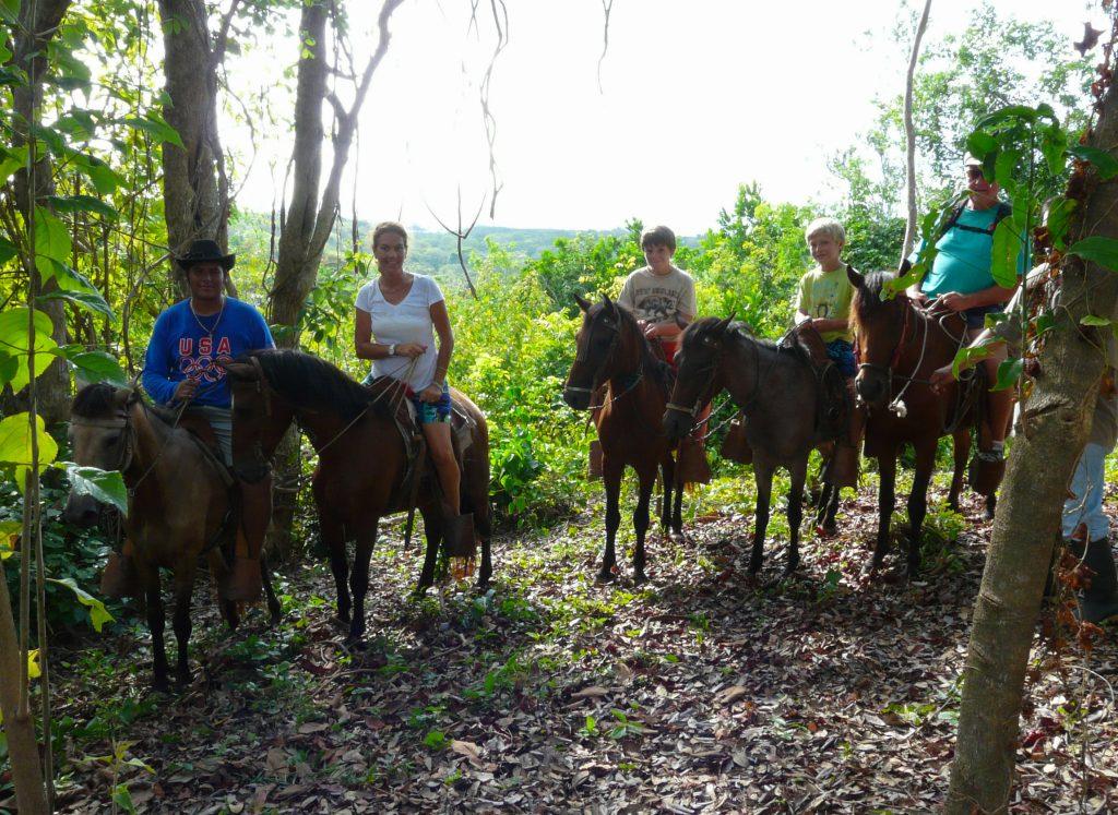 Roatan Horseback Amp Island Tour