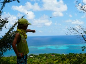 Roatan Island Tour Highlights