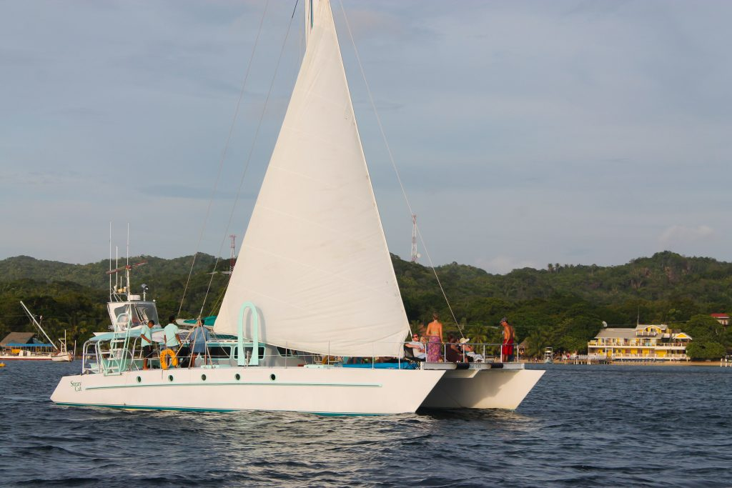Roatan sailing snorkeling